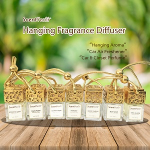 hanging fragrance diffuser